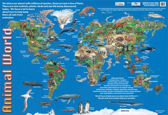 New Animals of the World Animal World Map Mini Poster eBay
