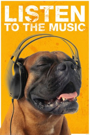 Listen to the Music - Musical Mastiff