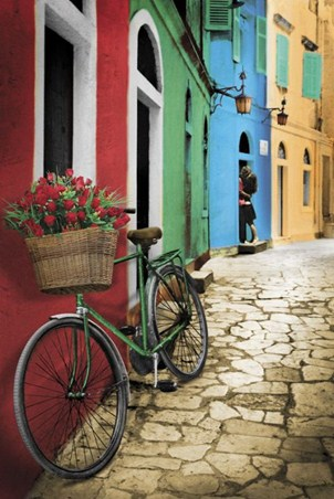 Romantic Alleyway - Bike with Flowers