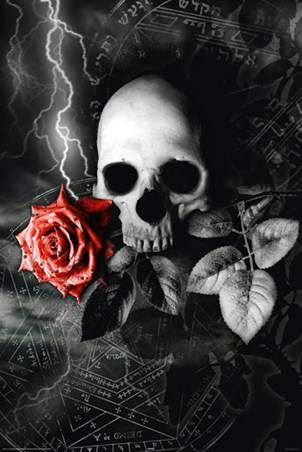 Gothic Skull with Rose - Gothic Fantasy