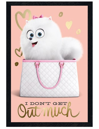 Black Wooden Framed I Don\'t Get Out Much, The Secret Life Of Pets ...