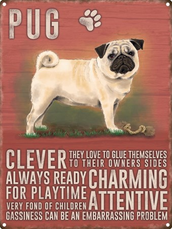 Tin Sign Navy And Army Illustrated What we/'ve got we/'ll hold 30 x 40cm