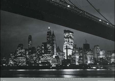 Under Manhattan Bridge New York City Collection