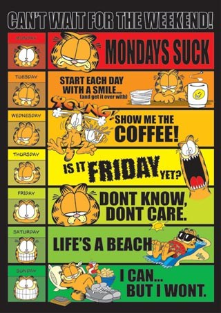 Slim Poster Garfield Cheeky Comic Cat 91.5 x 31.5cm